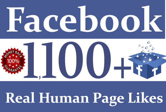 give you 1,100+ Real Facebook Page likes