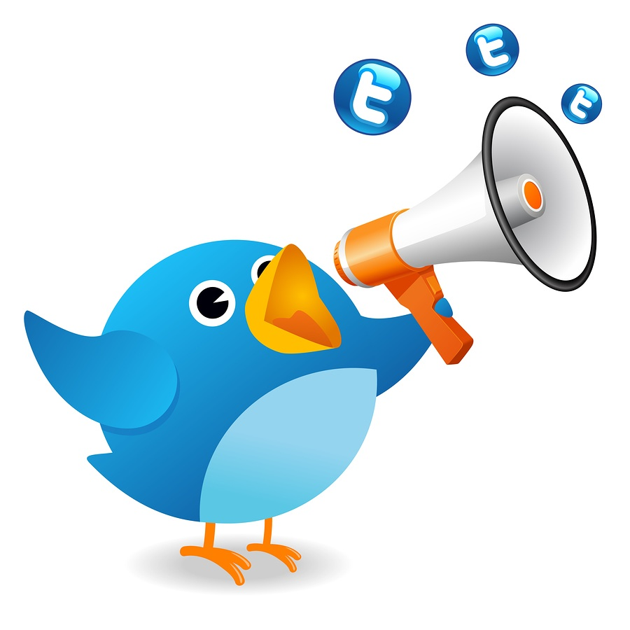 Add 13,000+ High Quality Twitter followers