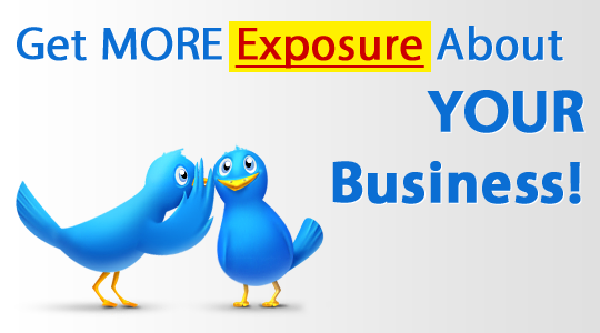 provide 1200 twitter followers