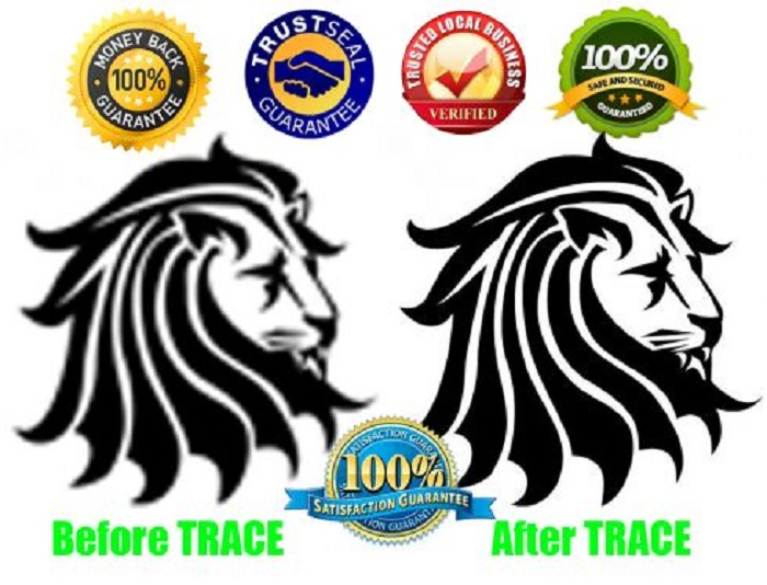 Do Pro Vector Tracing And Redraw Any Image