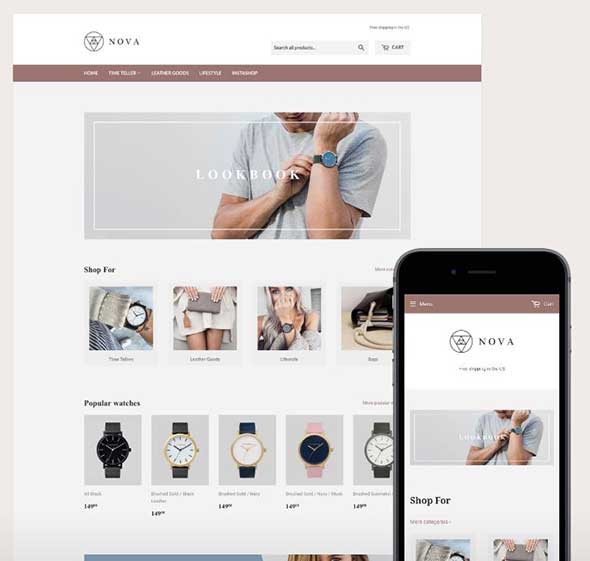 create a shopify drop shipping store