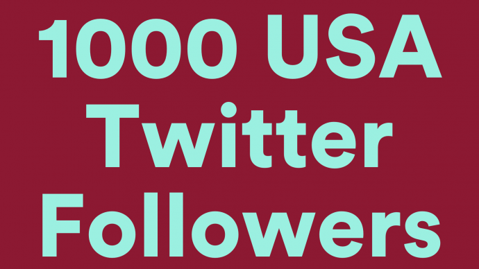1000 Real USA twitter follower with nondrop guaranteed