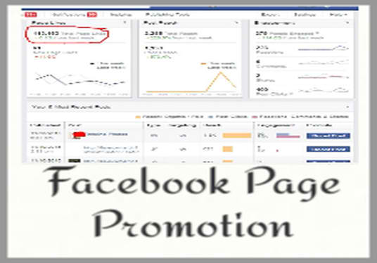 high ranking business promotion