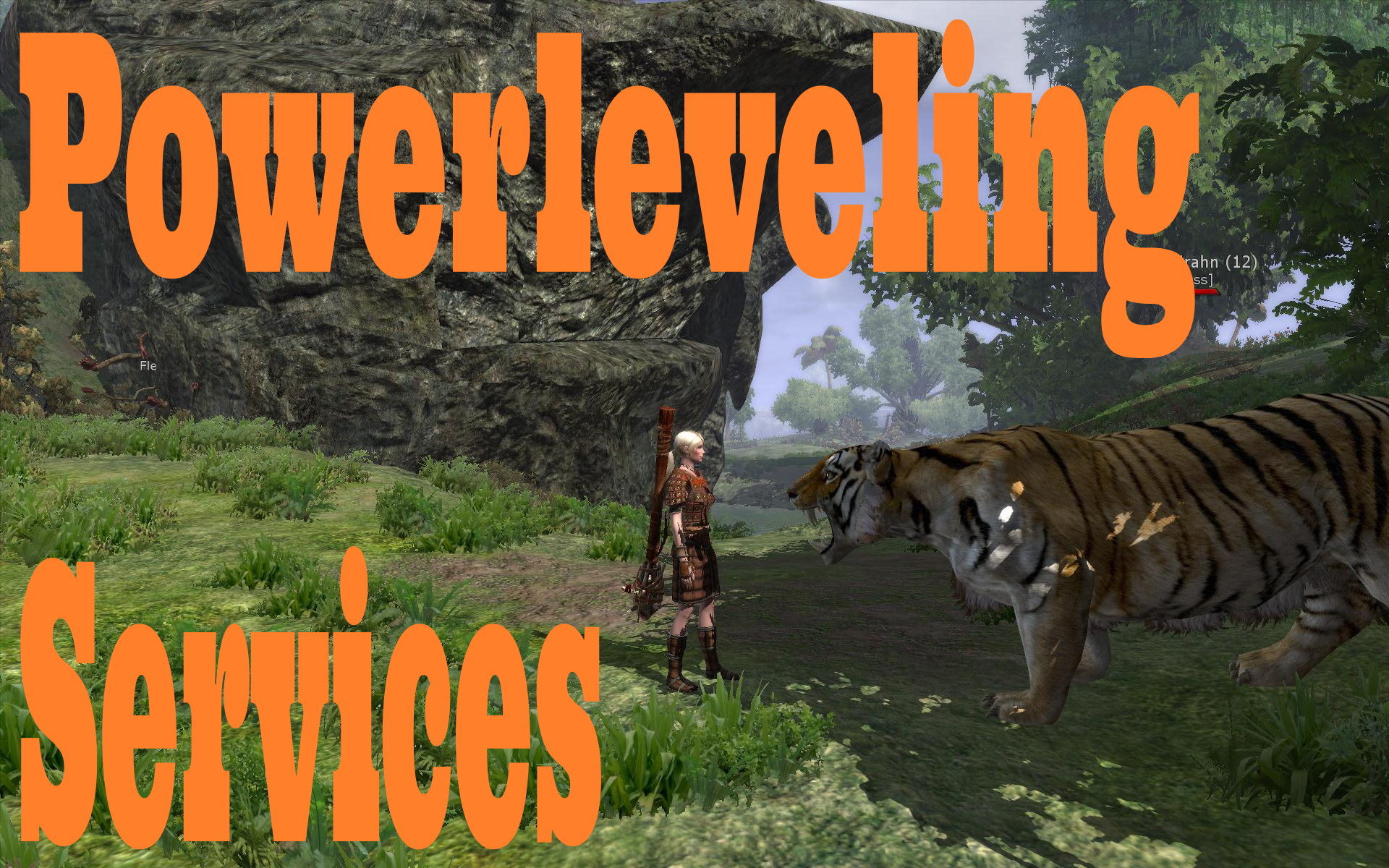 power level your character in any online game for five hours