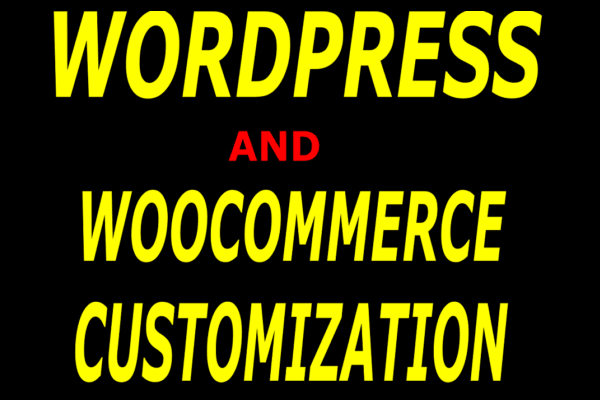 do wordpress customization now