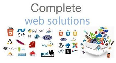 evaluate a Web Solutions Manager for position