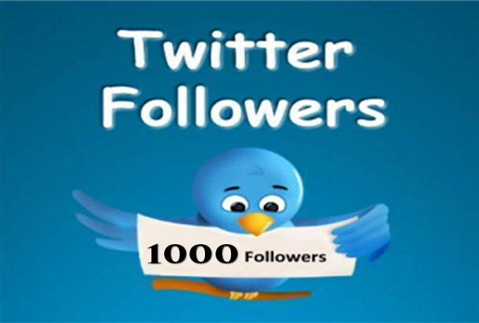 provide 1000+ Twitter Follower