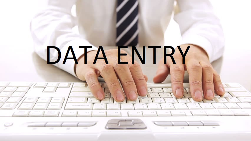 do any data entry job professionall