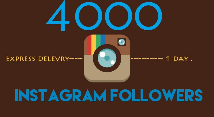 give you 4000+ high Quality instagram followers
