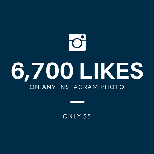 provide you 6,700 INSTAGRAM PHOTO LIKES