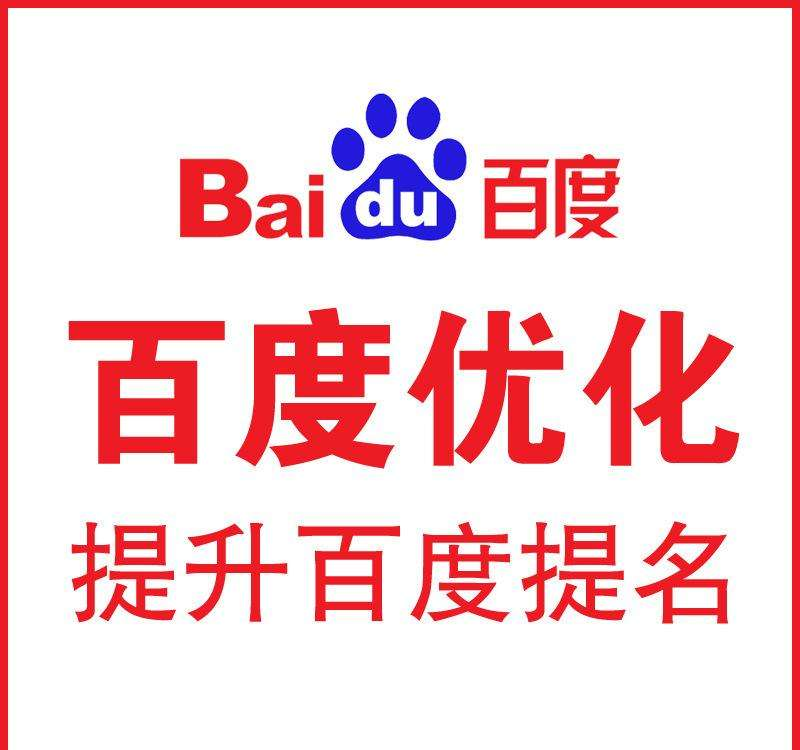 Do Professional Baidu Seo,Baidu Ranking,China Search Engine