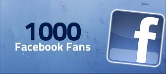 provide 1000 + Facebook Fanpage Likes