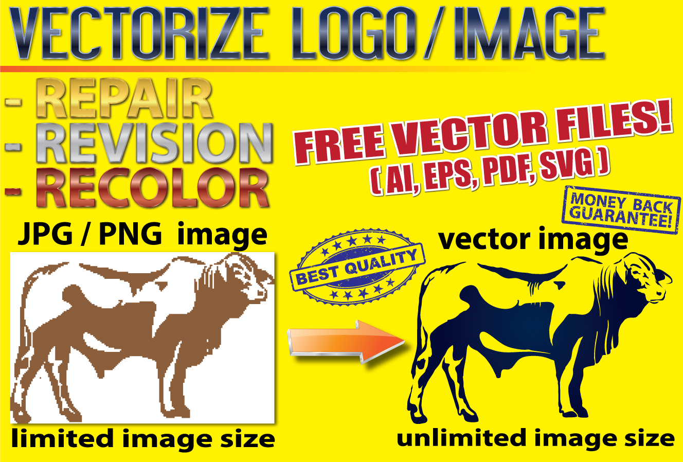 Vectorize Your Logo / Image