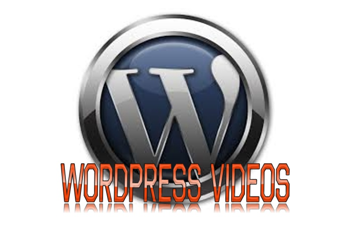 Send You Video How To Mastering Wordpress