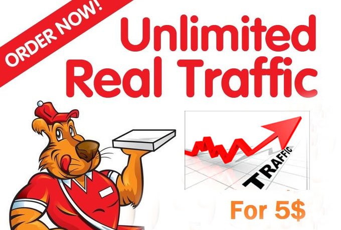send a software get unlimited Real TRAFFIC to your Site