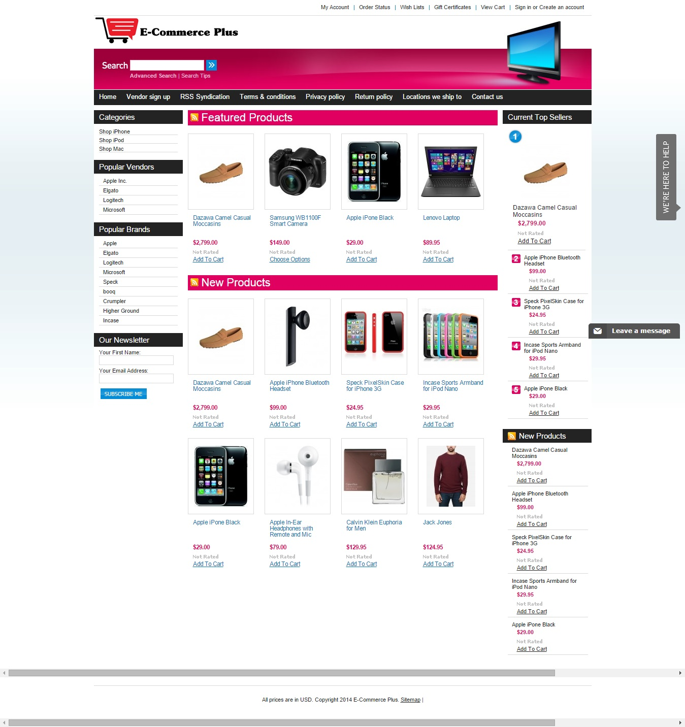 setup a hosted ecommerce website