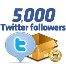 deliver 10000 twitter follower to your account