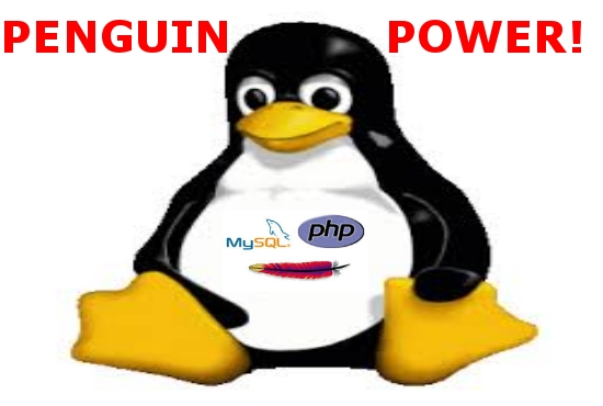 setup and configure your Linux Server or VPS