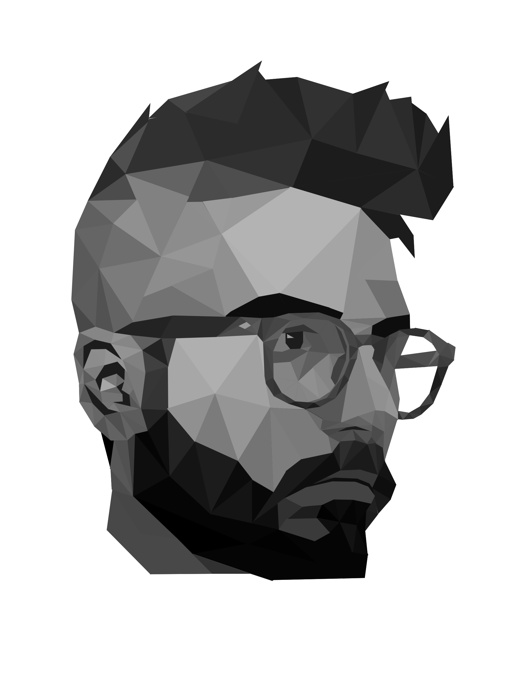 create a polygon business logo or transform your portrait or current logo into a super-cool polygon design or graphic.