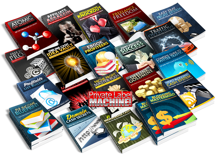 sell you 10,000 PLR article in more than 200 niche