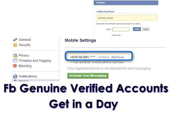 give phone verified facebook accounts in a Day