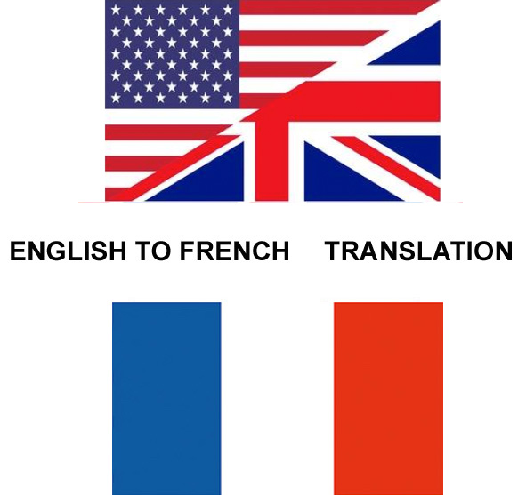 translate from English to French with professional quality