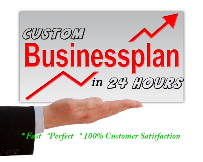 write Customized Business Plan in 24 hours