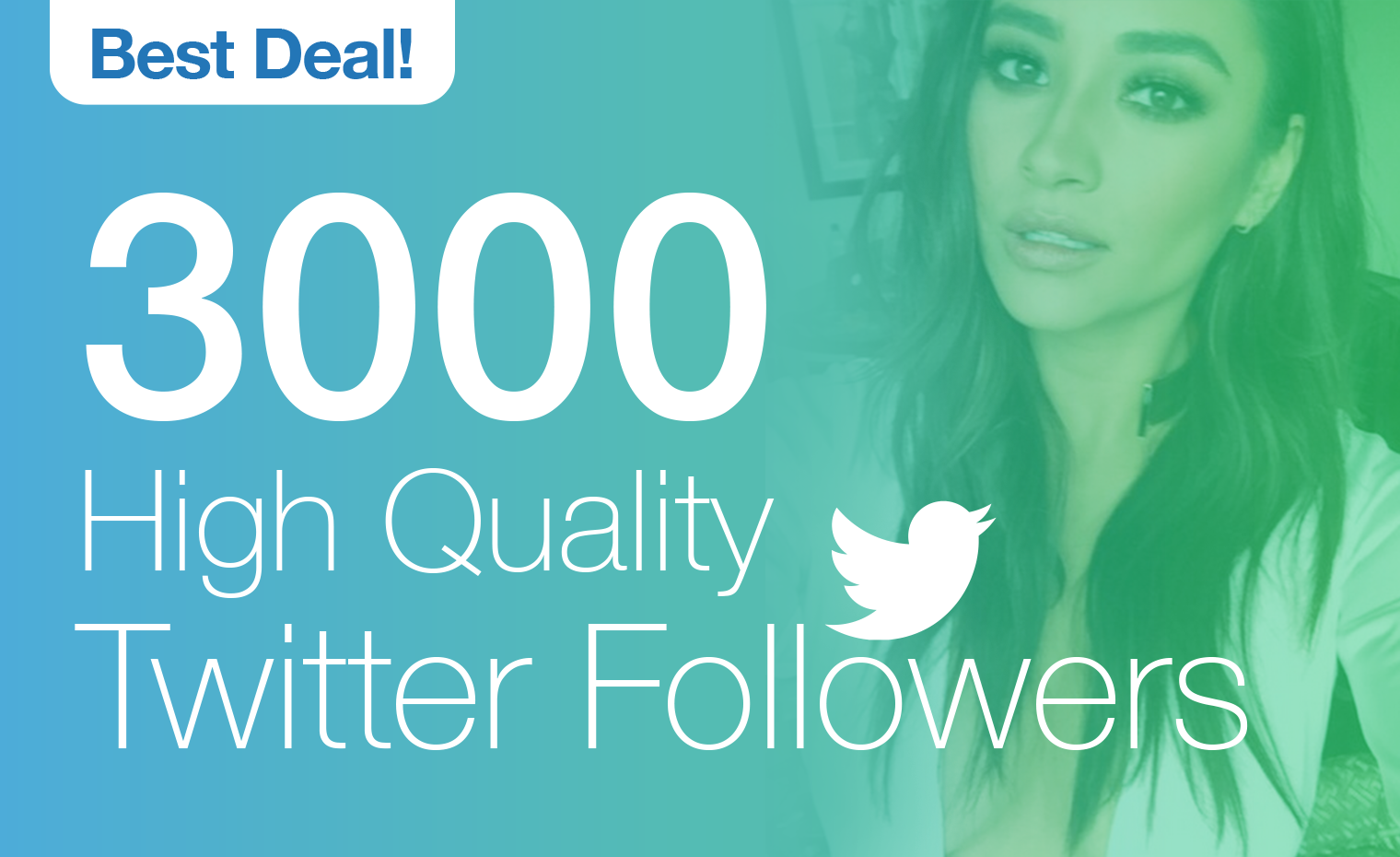 give you High Quality 3000 Twitter followers