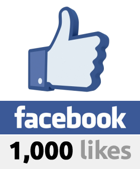 give u 500 real and permanent facebook likes