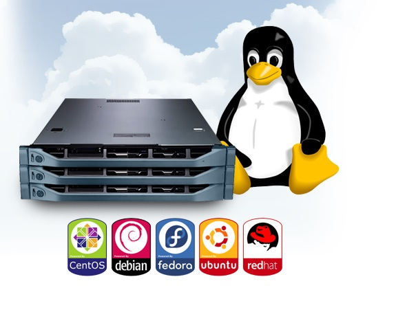 configure your linux vps