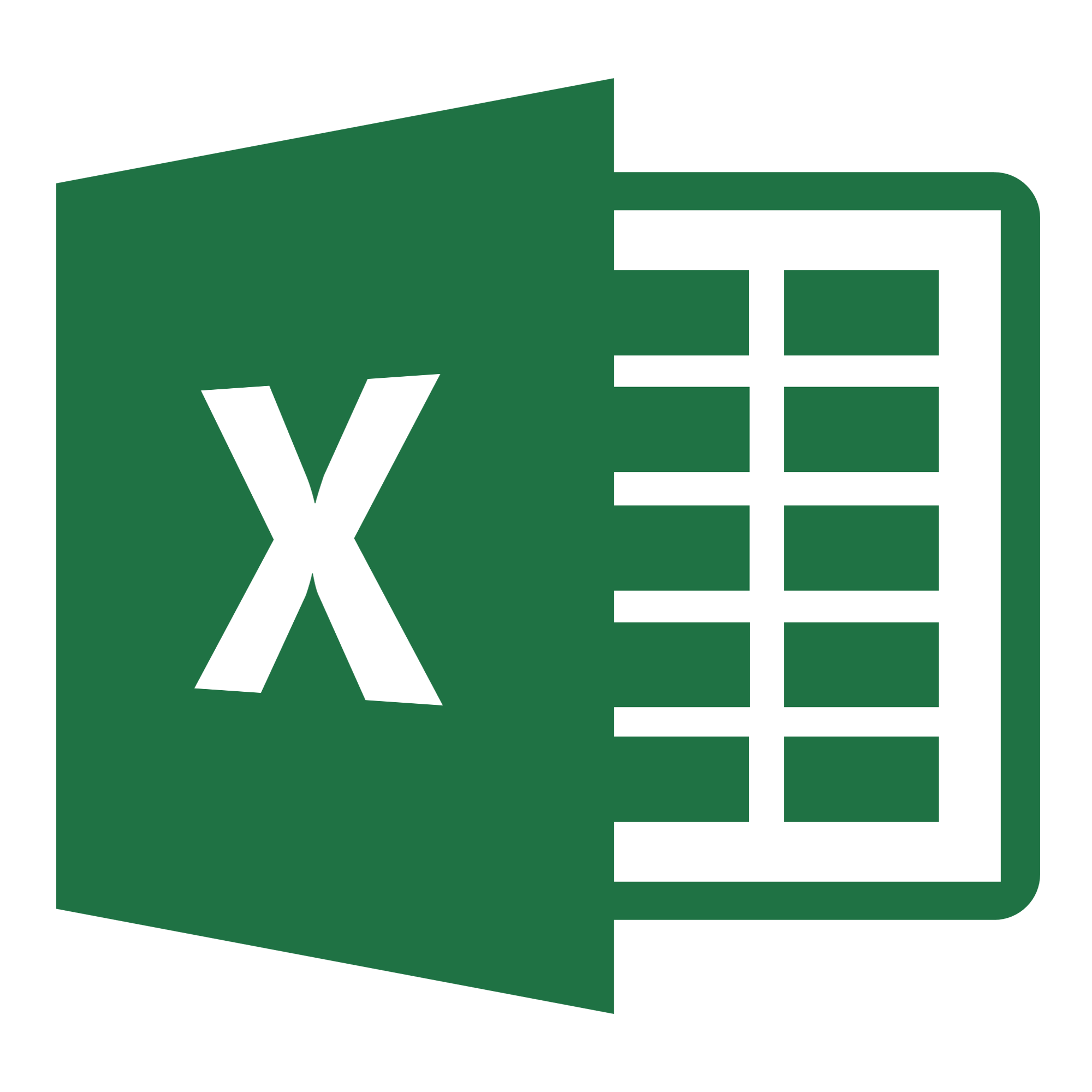 enter 1 page worth of data into an excel spreadsheet