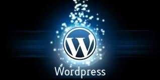 install and build a wordpress site for you