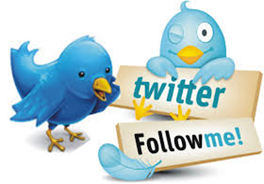 Give you 10k+ twitter Followers