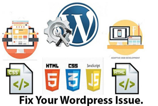 diagnosis any WordPress issue free and fix it