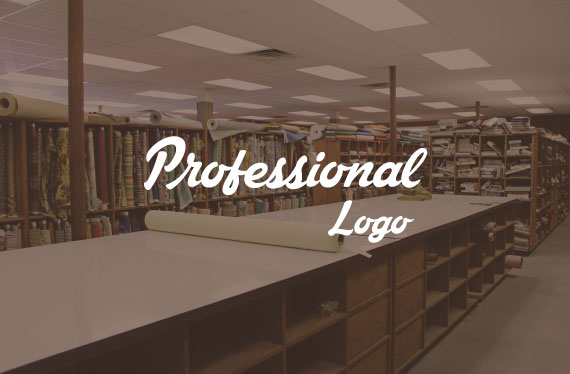 create professional character logo in 24hrs