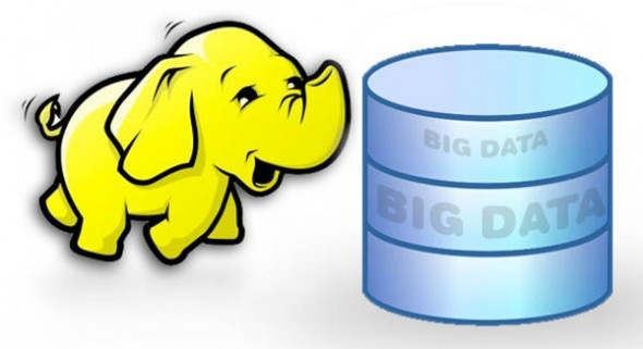setup your Hadoop cluster and write MapReduce programs