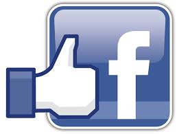 Give 100 likes to your facebook page