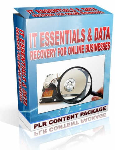 give IT Essentials & Data Recovery For Online Businesses