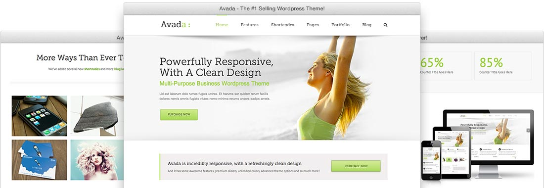 install wordpress or plugins for you