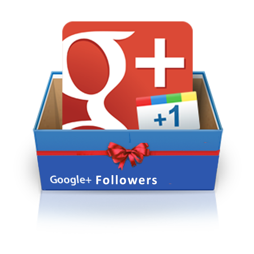 Provide you 300 Real GooglePlus Followers
