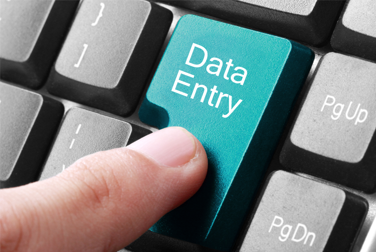 do expertly 3 hours of data entry work