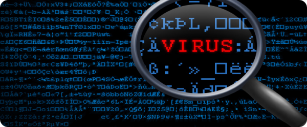 perform a virus scan and computer tune-up