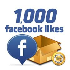 give you 400 plus active real facebook page likes