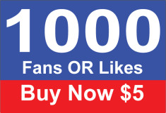 add 1000 Real Facebook Fan Page Likes