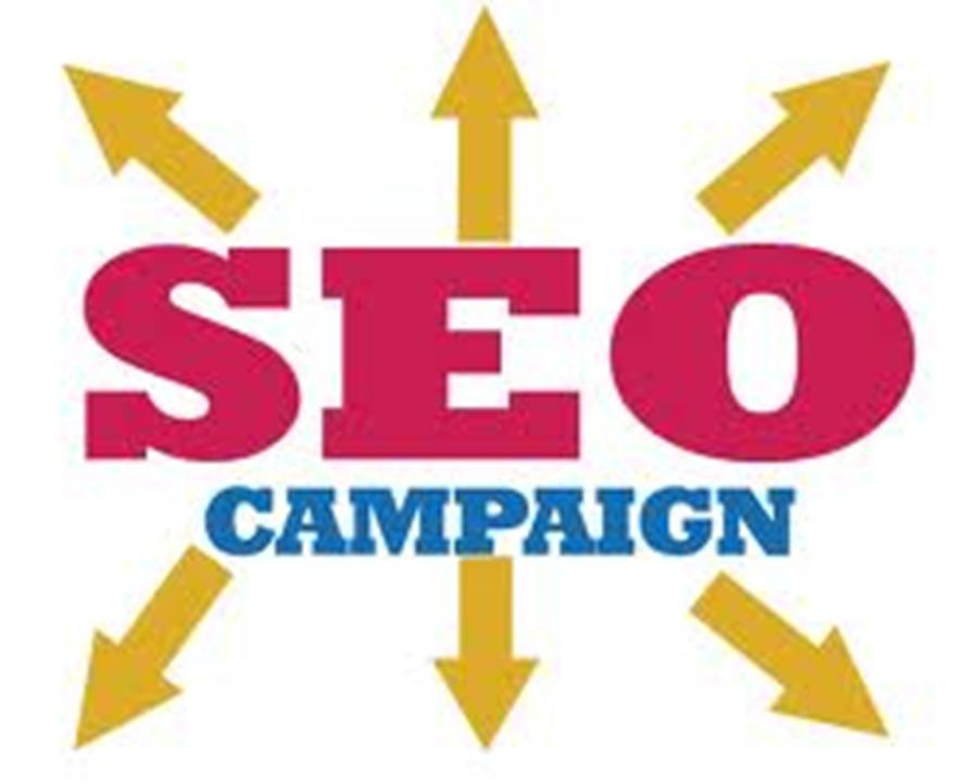 Provide Complete SEO Campaign to Boost your Site Ranking
