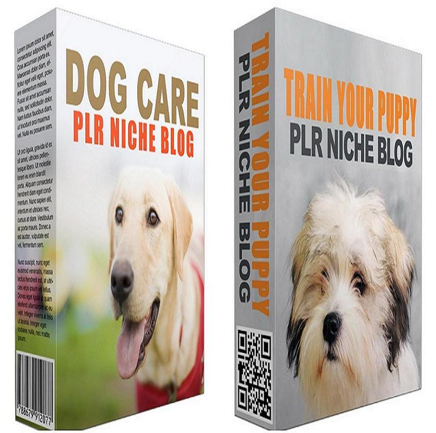 give you 2 Niche Blogs