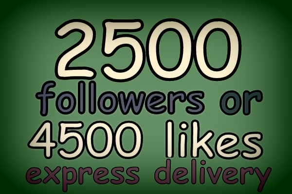 add 2500 Instagram followers to your instagram account