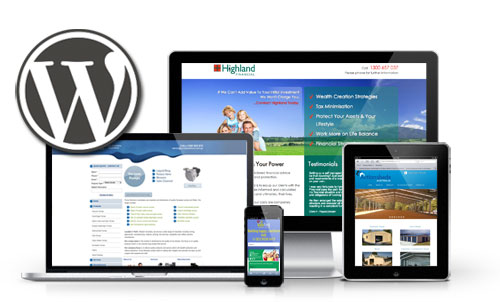 design for you an attractive full affiliate website using wordpress