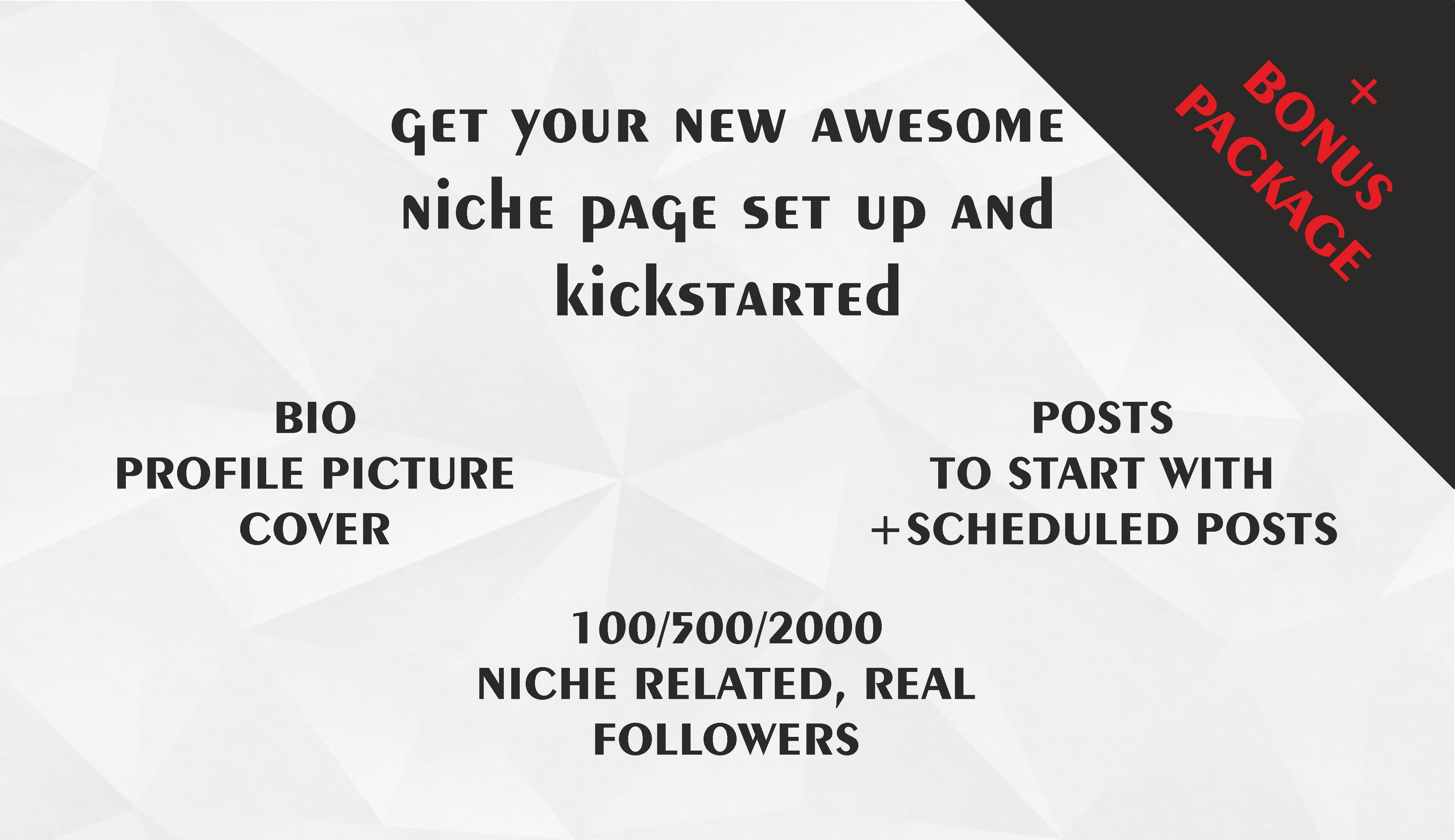 set up a social media page in any niche for