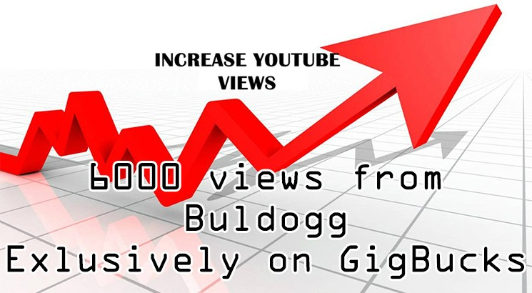 provide 15 000 high retention youtube views